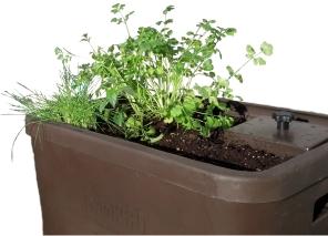 tuug24plants